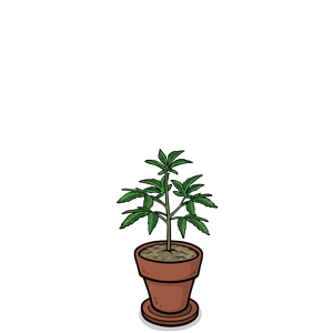 Sprout Pot